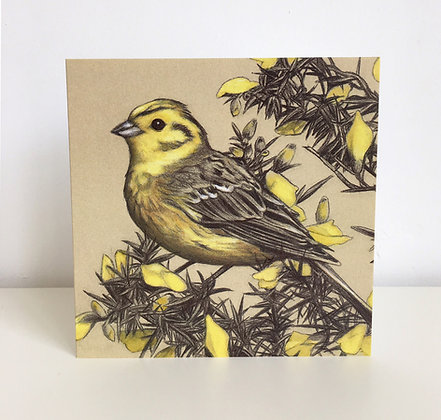 'Yellowhammer on a Gorse Bush' Greeting Card