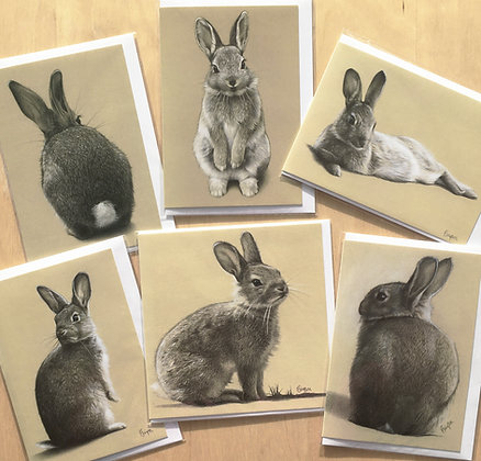 Pack of 6 Mixed Bunny Cards