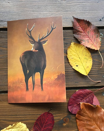 'Autumn Stag' Greeting Card