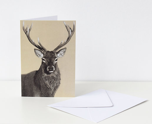 'Portrait of a Stag' Greeting Card