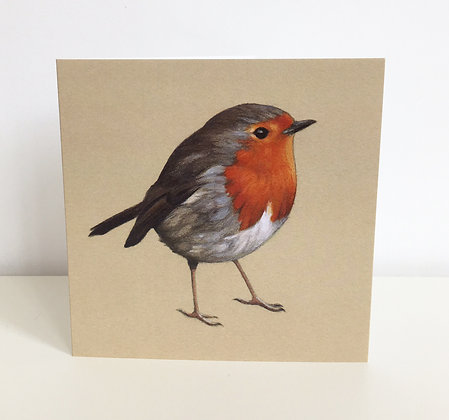 'Robin Redbreast' Greeting Card