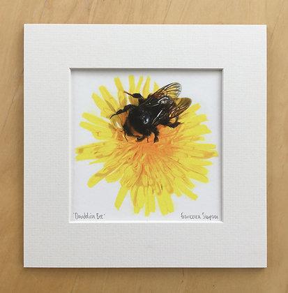 'Dandelion Bee' Print