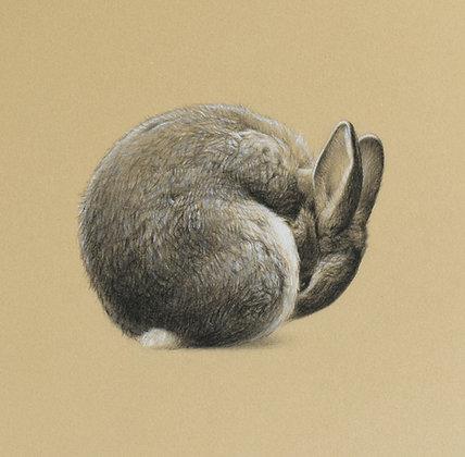 'Bunny Ball' Print