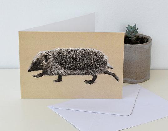 'Ambling Hedgehog' Greeting Card