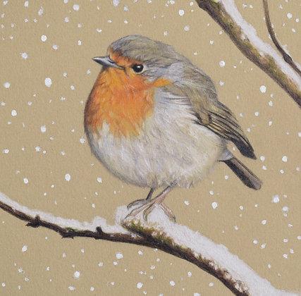 'Winter Robin' Print