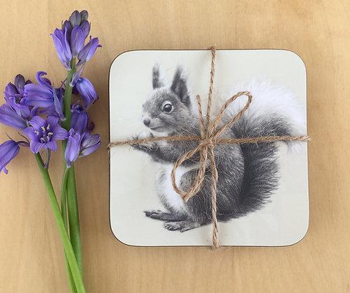 Set of 4 Squirrel Coasters
