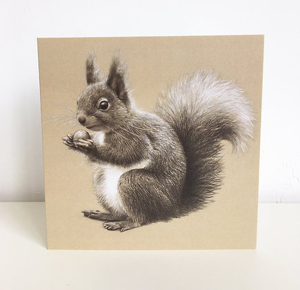 'Red Squirrel' Greeting Card