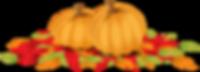 Pumpkins vacances