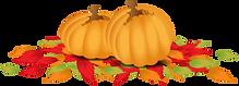 Herbst Bollmannsruh