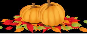 Astuces pour un automne en santé