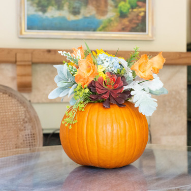 Place your Koo-toore-a in a fresh carved pumpkin with fall foliage and you've created a arrangement that will last from Halloween to Thanksgiving!