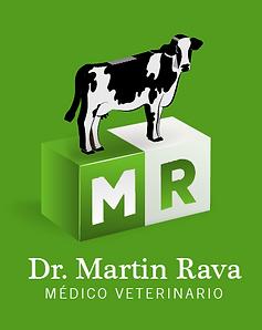 martin rava logos_Mesa de trabajo 1 copi