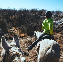 En route 🤩#leranchelbronco #horseride #