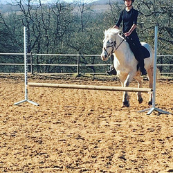 En selle !!!#leranchelbronco #pony #spor
