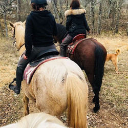 ☺️☺️☺️#leranchelbronco #passion #horseri