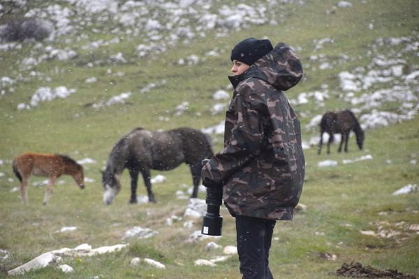 Travel photographer Runa Lindberg captures horses in Bosnia