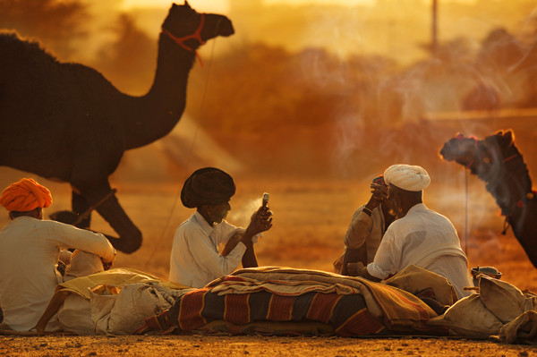 Travel photographer Runa Lindberg caputres a Camel Festival in Pushkar India