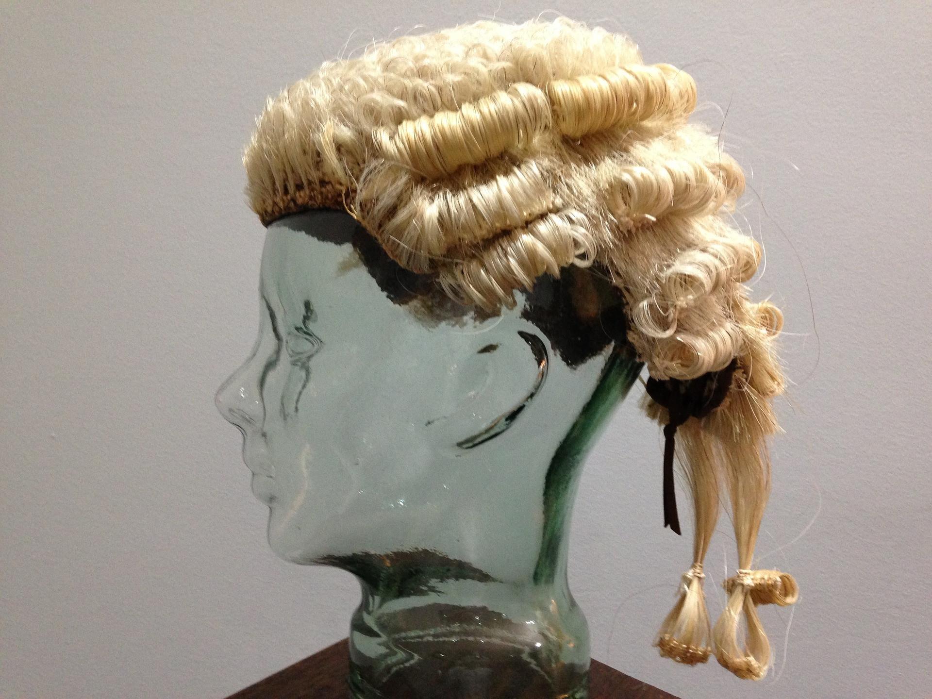 Advocacy/Court Representation