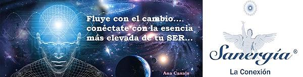 Sanergia Ana Casals.jpg