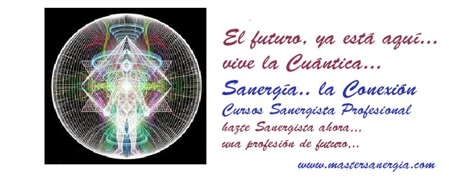 web master sanergia 4 png.png