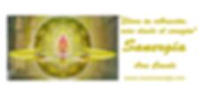 web master sanergia.1 png.png