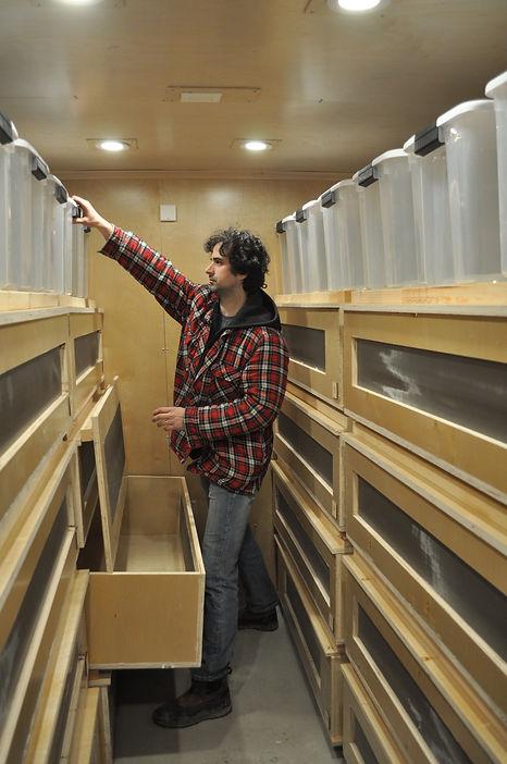 kubo shelves.JPG