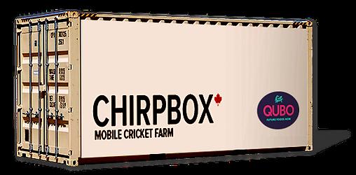Qubo Chirpbox cricket farm.png