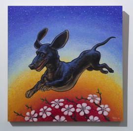 Oscar the Flying Weiner Dog