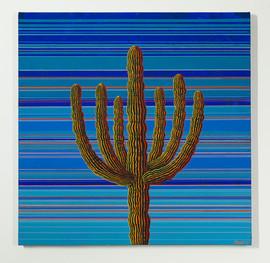 Six Arm Saguaro