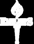 Elite Foudnation Logo White.png