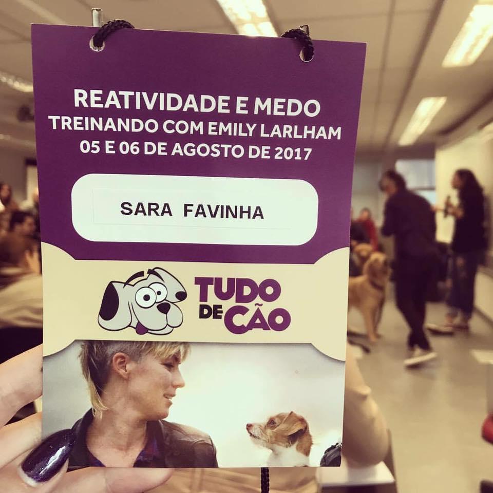 Treinamento Cães -V Mariana -Paraíso