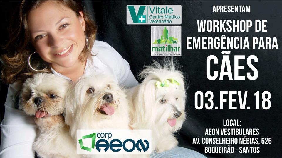 Workshop Cães - V Mariana - Paulista