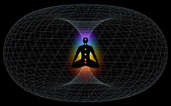 Field Dynamics Human Energy System.jpg
