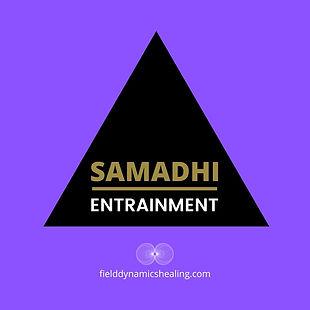 FIELD_DYANMICS_Samadhi_Entrainment.jpg