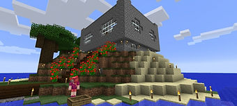 minecraft house.jpg