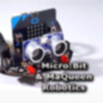 Microbit & MaQueen program.jpg