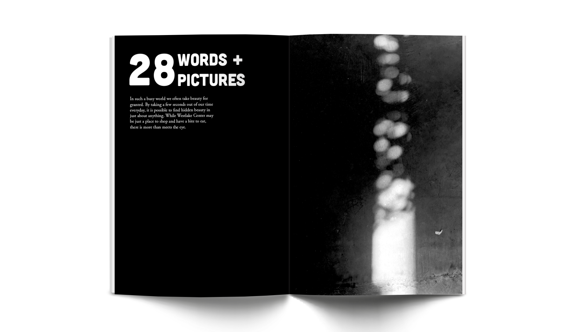 28 Words + Pictures