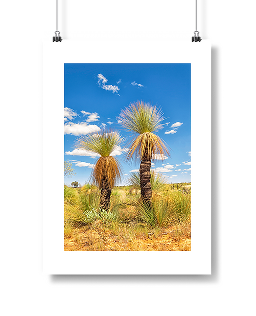grass-tree.png