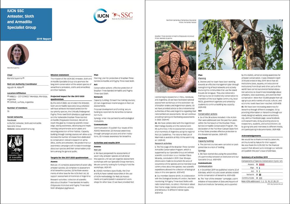 Relatório da IUCN SSC: Anteater, sloth and armadillo specialist group 2019