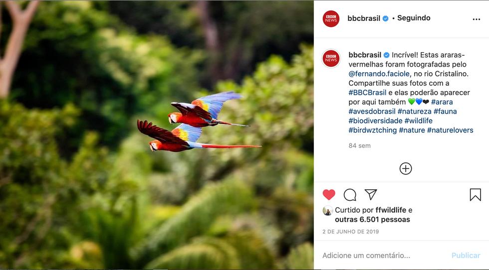 BBC Brasil medias