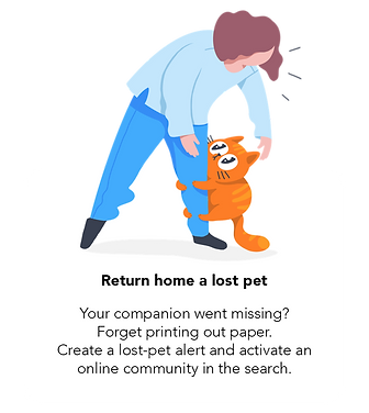 Return home a lost pet.png