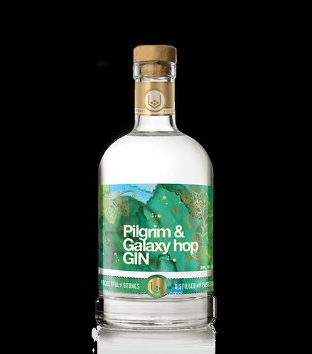 Pilgrim & Galaxy Hop Gin