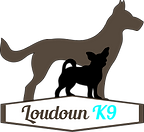 LK9-Logo.png