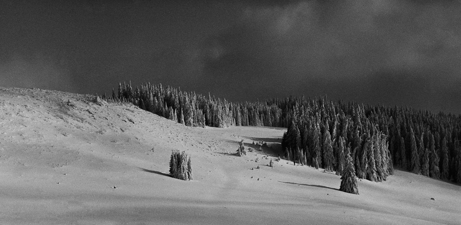 Past Winter