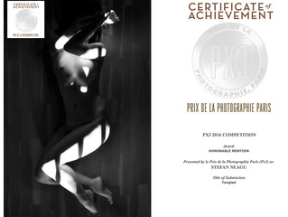 Honorable Mention at PX3 Awards 2016