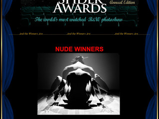 Honorable Mention at B&W Spider Awards 2015