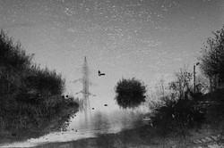 River Reality