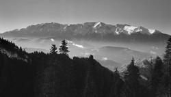 Fog Under Bucegi Mountains