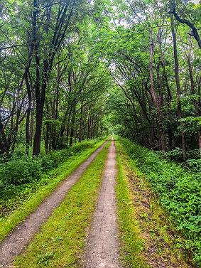 great river state trail-004.jpg
