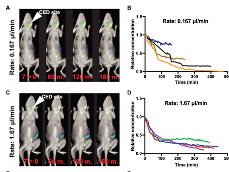 PET, image-guided HDAC inhibition of pediatric diffuse midline glioma improves survival in murine mo